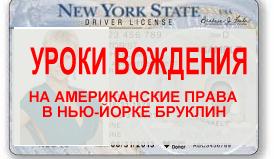 DRIVER LICENCE BROOKLYN NY