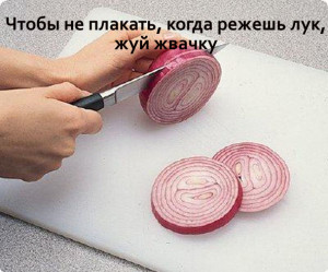 lifehacks-1715531563
